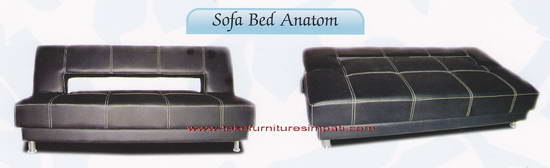 sofa bed anatom